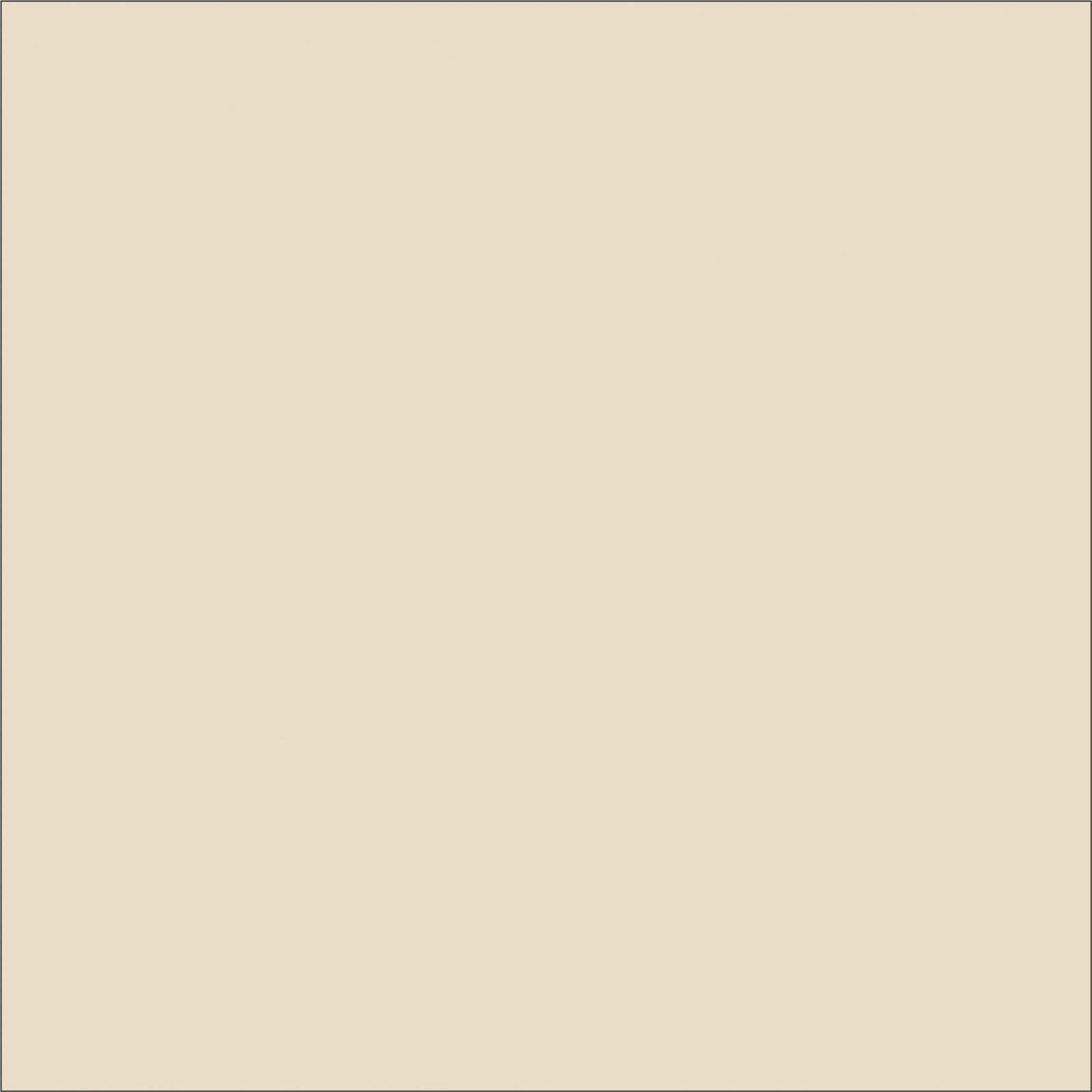 Colour swatch of African Ivory